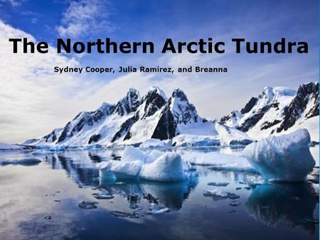 North Arctic Tundra Sydney, Julia, and Breanna Sydney Cooper, Julia Ramirez, and Breanna The Northern Arctic Tundra.