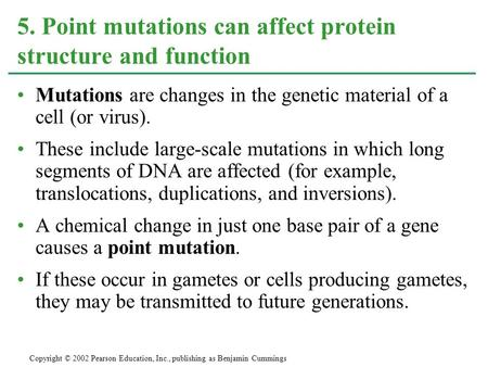 5. Point mutations can affect protein structure and function