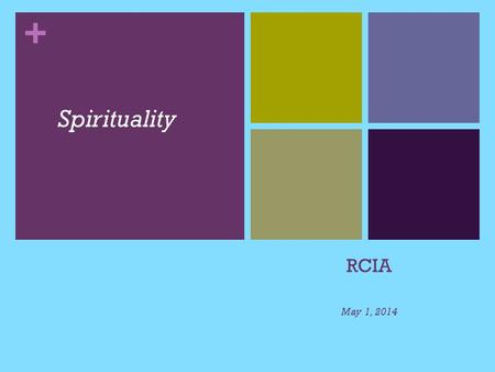 + RCIA May 1, 2014 Spirituality. What is Spirituality? Spirituality is that which gives meaning to one's life and draws one to transcend oneself. Spirituality.