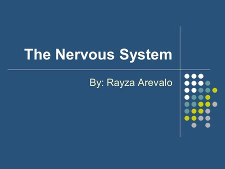 The Nervous System By: Rayza Arevalo. What is the nervous system? The nervous system is the system of cells, tissues, and organs that regulates the body's.