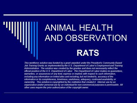 ANIMAL HEALTH AND OBSERVATION RATS This workforce solution was funded by a grant awarded under the President's Community-Based Job Training Grants as implemented.
