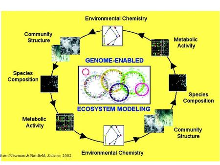 - from Newman & Banfield, Science, 2002. Types of models for systems biology.