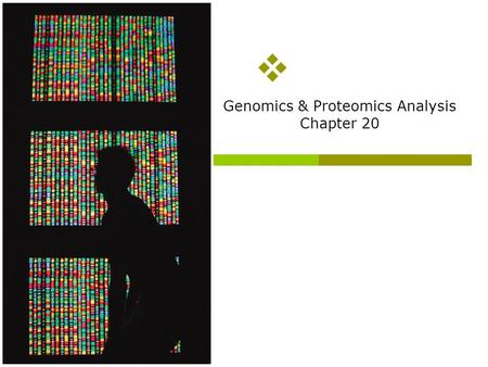 Genomics & Proteomics Analysis Chapter 20 Overview of topics to be discussed  How to sequence genomic DNA (we will have to touch briefly on polymerase.