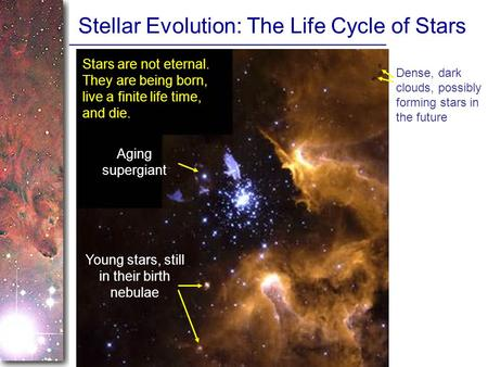 Stellar Evolution: The Life Cycle of Stars Dense, dark clouds, possibly forming stars in the future Young stars, still in their birth nebulae Aging supergiant.