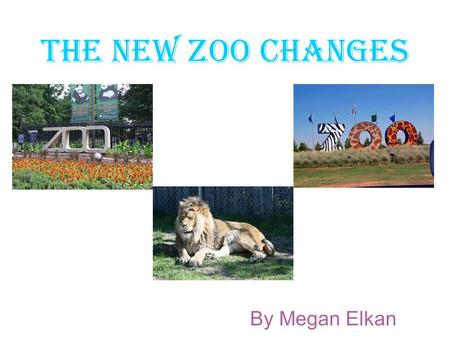 The new zoo changes By Megan Elkan. The animals There are lots of animals at the zoo but now we have increased our elephants and they are our new addition.