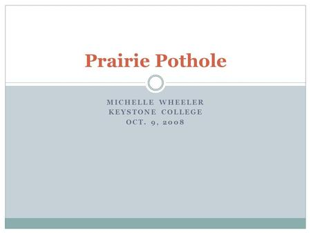 MICHELLE WHEELER KEYSTONE COLLEGE OCT. 9, 2008 Prairie Pothole.