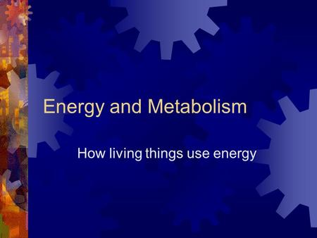 How living things use energy