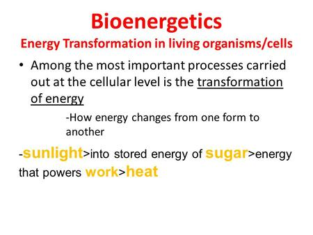 Bioenergetics Energy Transformation in living organisms/cells Among the most important processes carried out at the cellular level is the transformation.