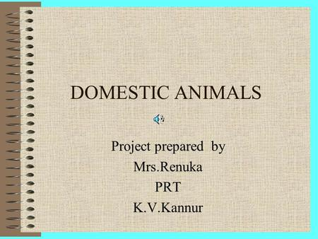 Project prepared by Mrs.Renuka PRT K.V.Kannur