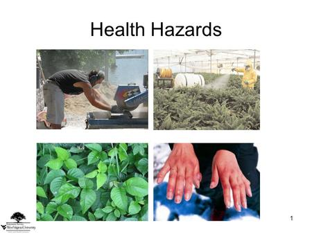1 Health Hazards. This material was produced under grant number SH-22248-11-61-F-54 from the Occupational Safety and Health Administration, U.S. Department.