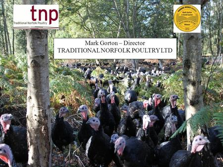 1 Mark Gorton – Director TRADITIONAL NORFOLK POULTRY LTD.