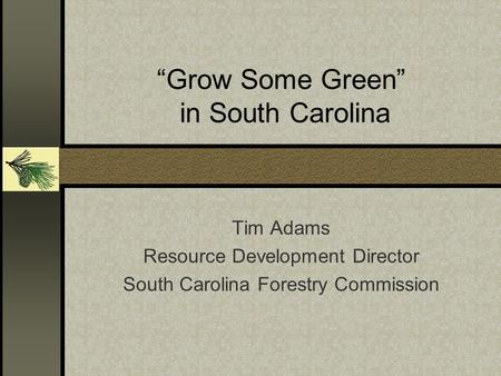 """Grow Some Green"" in South Carolina Tim Adams Resource Development Director South Carolina Forestry Commission."
