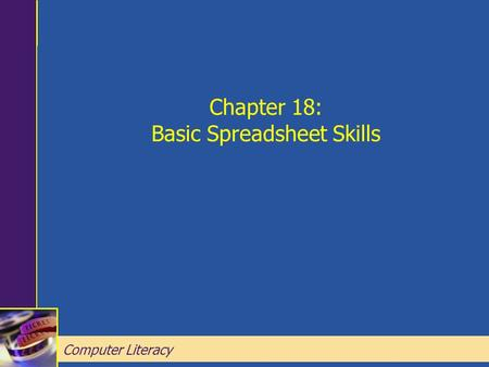 Computer Literacy Chapter 18: Basic Spreadsheet Skills Chapter 18: Basic Spreadsheet Skills Computer Literacy.