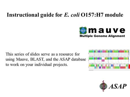 1 Instructional guide for E. coli O157:H7 module This series of slides serve as a resource for using Mauve, BLAST, and the ASAP database to work on your.