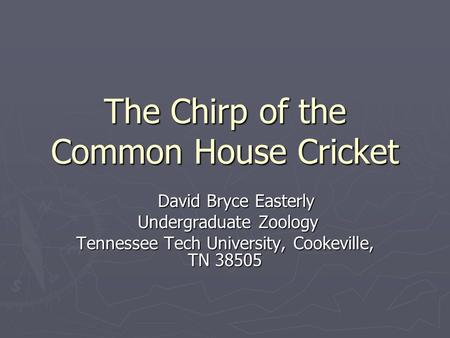 The Chirp of the Common House Cricket David Bryce Easterly David Bryce Easterly Undergraduate Zoology Undergraduate Zoology Tennessee Tech University,