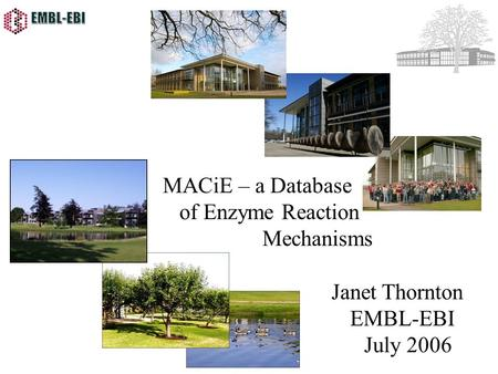 MACiE – a Database of Enzyme Reaction Mechanisms Janet Thornton EMBL-EBI July 2006.