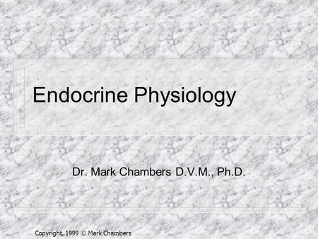 Copyright, 1999 © Mark Chambers Endocrine Physiology Dr. Mark Chambers D.V.M., Ph.D.