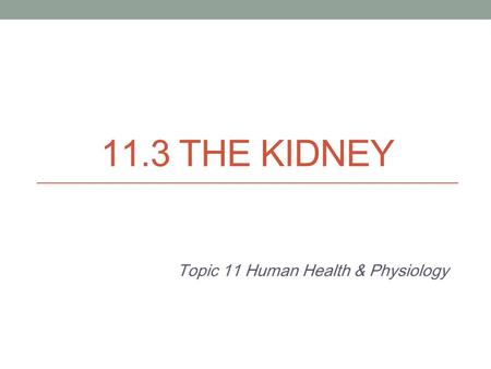11.3 THE KIDNEY Topic 11 Human Health & Physiology.