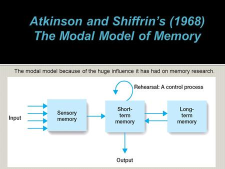 The modal model because of the huge influence it has had on memory research.