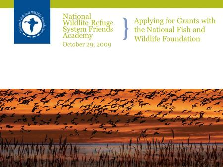 Applying for Grants with the National Fish and Wildlife Foundation National Wildlife Refuge System Friends Academy October 29, 2009.