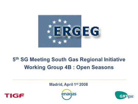 Madrid, April 1 st 2008 5 th SG Meeting South Gas Regional Initiative Working Group 4B : Open Seasons.