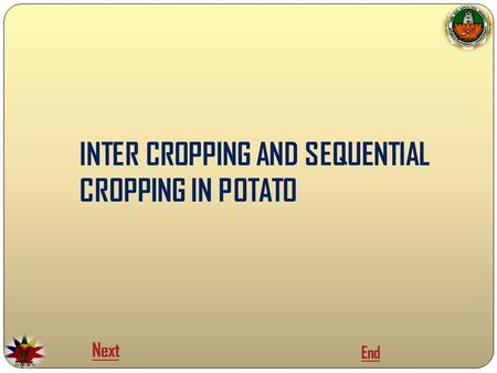 INTER CROPPING AND SEQUENTIAL CROPPING IN POTATO Next End.
