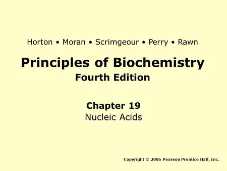 Principles of Biochemistry Fourth Edition Chapter 19 Nucleic Acids Copyright © 2006 Pearson Prentice Hall, Inc. Horton Moran Scrimgeour Perry Rawn.
