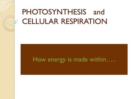 PHOTOSYNTHESIS and CELLULAR RESPIRATION How energy is made within…..