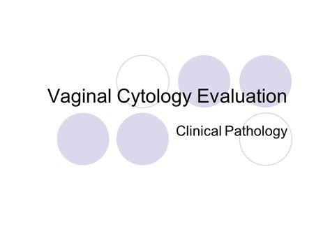 Vaginal Cytology Evaluation
