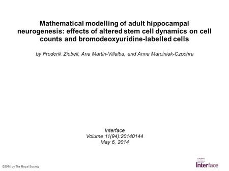 Mathematical modelling of adult hippocampal neurogenesis: effects of altered stem cell dynamics on cell counts and bromodeoxyuridine-labelled cells by.