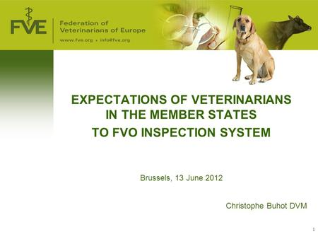 1 EXPECTATIONS OF VETERINARIANS IN THE MEMBER STATES TO FVO INSPECTION SYSTEM Brussels, 13 June 2012 Christophe Buhot DVM.