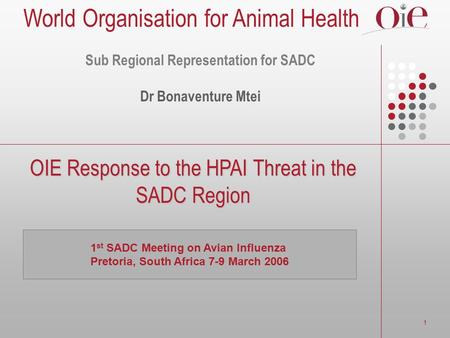 1 OIE Response to the HPAI Threat in the SADC Region 1 st SADC Meeting on Avian Influenza Pretoria, South Africa 7-9 March 2006 Sub Regional Representation.