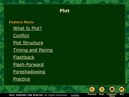 What Is Plot? Conflict Plot Structure Timing and Pacing Flashback Flash-Forward Foreshadowing Practice Plot Feature Menu.