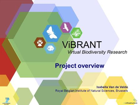 ViBRANT Virtual Biodiversity Research Project overview Isabella Van de Velde Royal Belgian Institute of Natural Sciences, Brussels.
