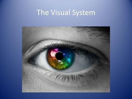 The Visual System. The Nature of Light Electromagnetic Spectrum – An energy spectrum that includes X-rays, radar, and radio waves – A small portion of.