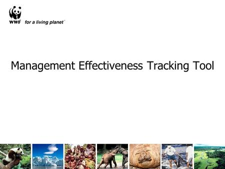 Management Effectiveness Tracking Tool. 902 METT assessments included in the global study A major data source.