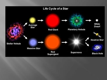 THE LIFE CYCLE OF STARS Stars are born in nebulae. Huge clouds of dust and gas collapse under gravitational forces, forming protostars. These young stars.