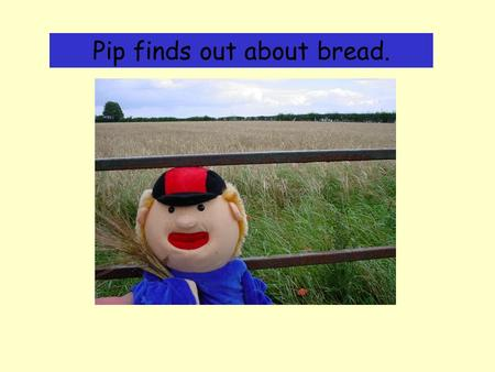 Pip finds out about bread.. I was making bread this week. I used some flour. This is how I found out where the flour comes from. I started in the countryside.