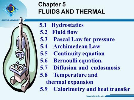 5.1 Hydrostatics 5.2 Fluid flow 5.3 Pascal Law for pressure 5.4 Archimedean Law 5.5 Continuity equation 5.6 Bernoulli equation. 5.7 Diffusion and endosmosis.