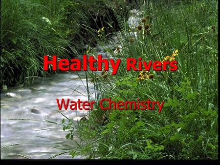 Healthy Rivers Water Chemistry Dissolved Oxygen Why is Dissolved Oxygen (DO) Important? Why is Dissolved Oxygen (DO) Important? Aquatic organisms need.