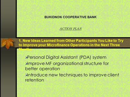 BUKIDNON COOPERATIVE BANK ACTION PLAN  Personal Digital Assistant (PDA) system  Improve MF organizational structure for better operation  Introduce.