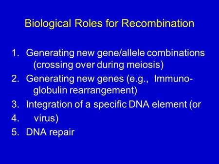 Biological Roles for Recombination 1.Generating new gene/allele combinations (crossing over during meiosis) 2.Generating new genes (e.g., Immuno- globulin.