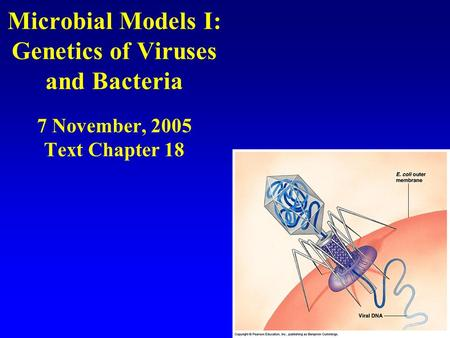 Microbial Models I: Genetics of Viruses and Bacteria 7 November, 2005 Text Chapter 18.
