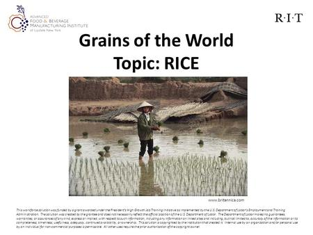 Grains of the World Topic: RICE This workforce solution was funded by a grant awarded under the President's High Growth Job Training Initiative as implemented.