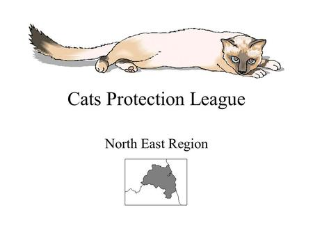 Cats Protection League North East Region. Help Prevent Cruelty to Cats Find out about our charity Locations of our Catteries Locations of our Shelters.