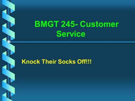 BMGT 245- Customer Service Knock Their Socks Off!!!