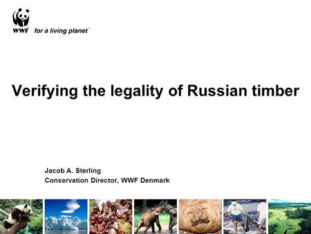 Verifying the legality of Russian timber Jacob A. Sterling Conservation Director, WWF Denmark.