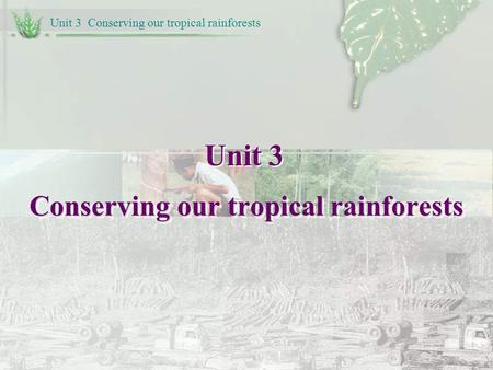 Unit 3 Conserving our tropical rainforests Unit 3 Conserving our tropical rainforests.