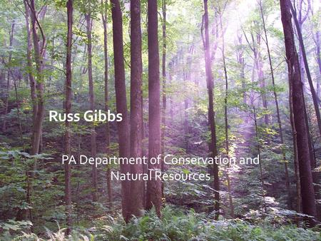 Russ Gibbs PA Department of Conservation and Natural Resources.