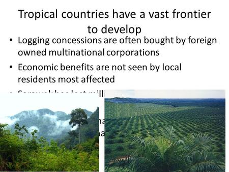 Tropical countries have a vast frontier to develop Logging concessions are often bought by foreign owned multinational corporations Economic benefits are.